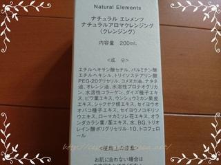 natural elements_02.JPG